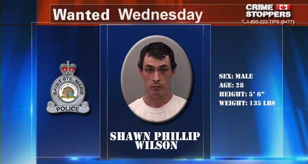 Wanted-Wednesday-052814