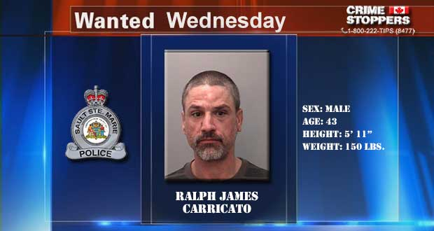 Crime Stoppers Wanted Wednesday