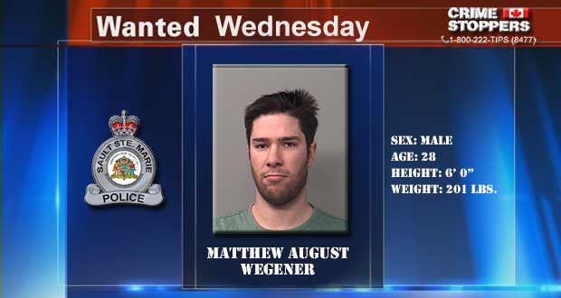 Wanted Wednesday