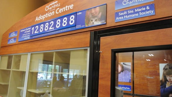 The Adoption centre for cats and kittens in partnership with the SSM Humane Society - We know they are very pleased about this!