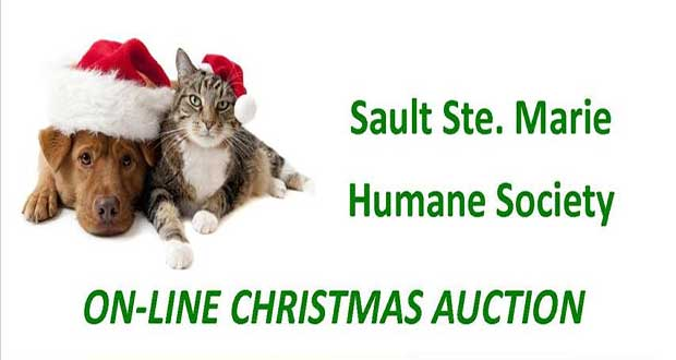 Humane Society Online Auction
