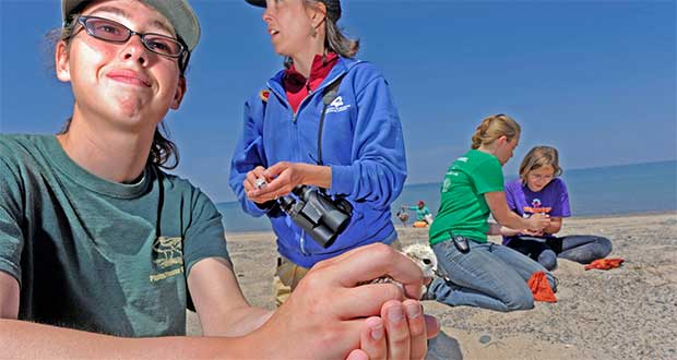 LSSU Piping Plovers