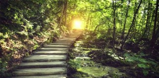 Summer Solstice LIVE CHANNEL & ACTIVATION with Judith Onley