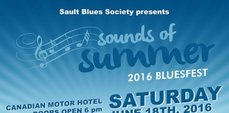 Sounds of Summer 2016 Bluesfest