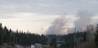 forest fire WAW007