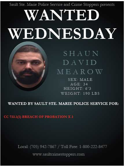 wanted-wednesday-1