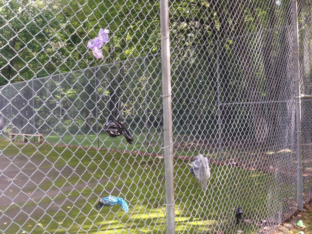 someone is flinging their doggie bags full of poop on the fence instead of using the trash can
