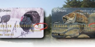 outdoors card both