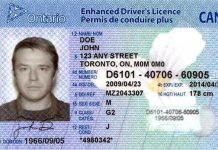 Ontario Driver's Licence