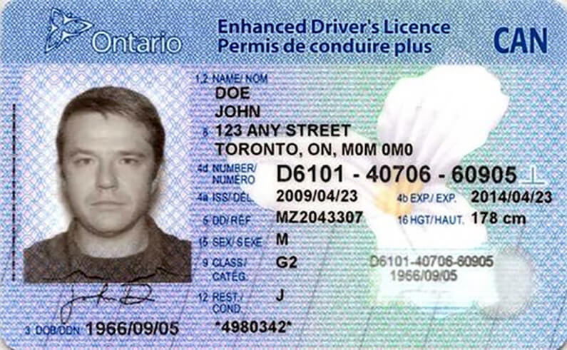 Ontario Extending Validation Periods For Driver Vehicle And Carrier Products Services And Health Cards Saultonline Com