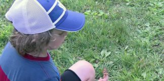 ARCH Butterfly Release