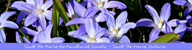Sault Ste. Marie Horticultural Society