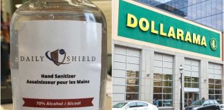 Daily Shield Hand Sanitizer Dollarama