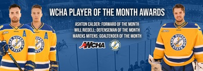 Lakers Hockey Players of the Month November 2020