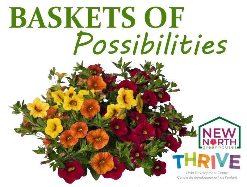 """New North Greenhouses - """"BASKETS FOR POSSIBILITIES"""""""